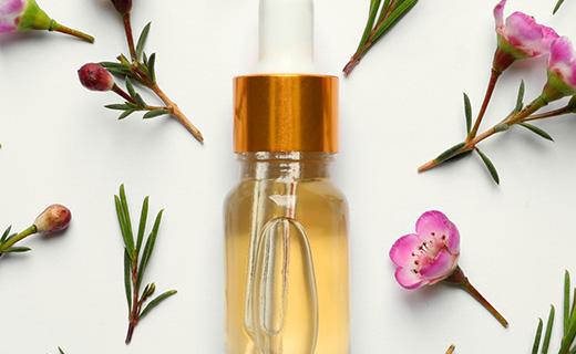 Ингредиент красоты: чайное дерево